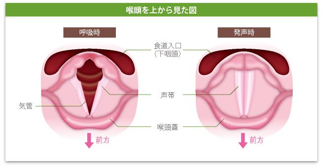 コロナ ウイルス 喉 の 違和感